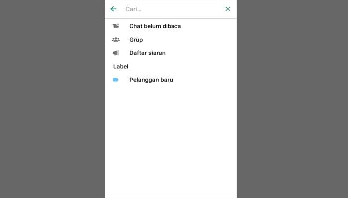 Fitur Filter Pencarian WhatsApp Business
