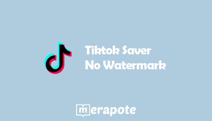 Tiktok Saver No Watermark